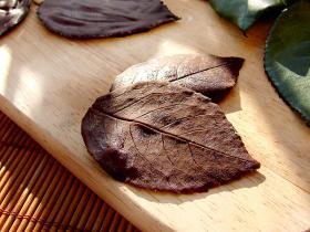 chocolate_lista_1