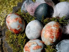carcade_eggs_1